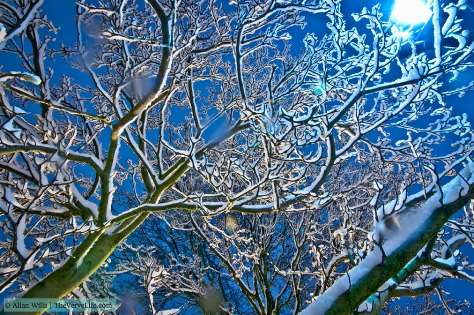 Photography | Winter Wonderland London